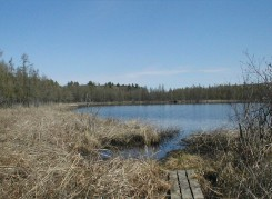 Cedar Bog Lake in late April