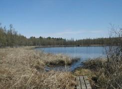 Cedar Bog Lake in late April