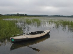 Kayak and Wild Rice