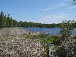 Cedar Bog Lake in late May