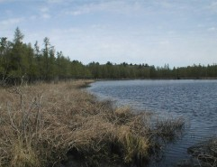 Cedar Bog Lake in early May