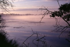 August mist over Fish Lake