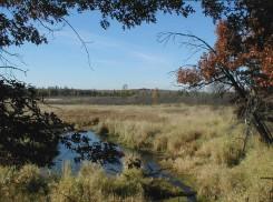 View of creek basin from Big Bend Overlook
