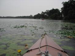 Summer canoeing on Fish Lake