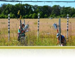 Photosynthesis measurements in BioCON experiment e141