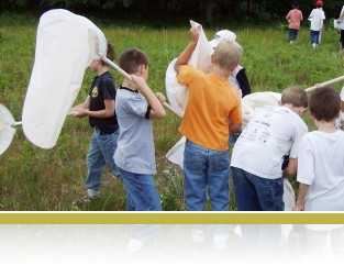 3rd graders sweep net for insects.