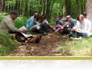 A teachers group identifies plants on Crone's Knoll.