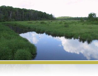 View of Cedar Creek.