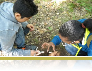 5th graders taking a soil core sample.