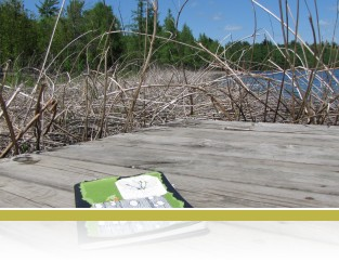 Artist Linda Buturian's journal on the dock at Cedar Bog Lake.