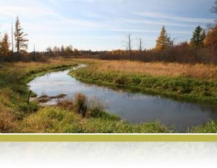 A view of Cedar Creek in autumn.