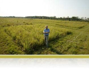 David Tilman in the Big Biodiversity experiment, E120