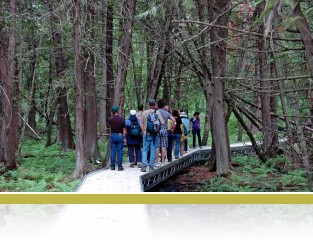 The boardwalk to Cedar Bog Lake with a teachers group.