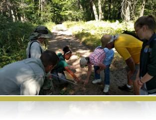 Cedar Creek Wildlife Survey citizen scientists looking at animal tracks.