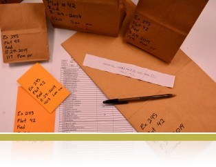 A group of hand labelled samples with a check-off sheet.