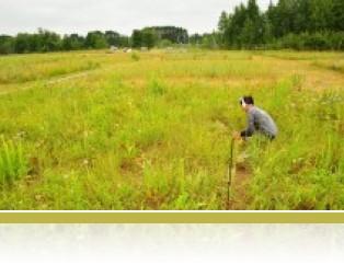 Clipping plant biomass in E120.