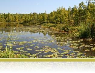 Cedar Bog Lake