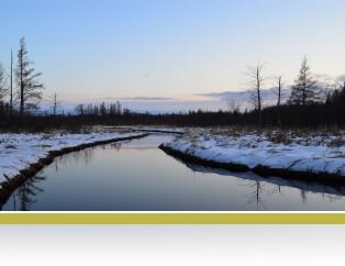 A view of Cedar Creek in winter.