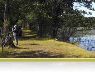 Photographers on the public nature trail, photo by Frank Meuschke