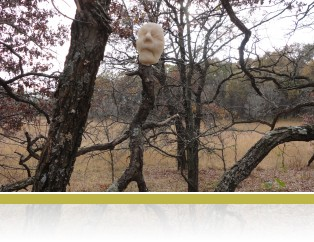 A mask by Jill Johnson hangs from a tree in the savanna.