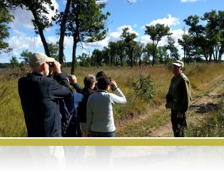 Birdwatchers join a tour guide from the Red-headed Woodpecker Recovery Project on a guided walk